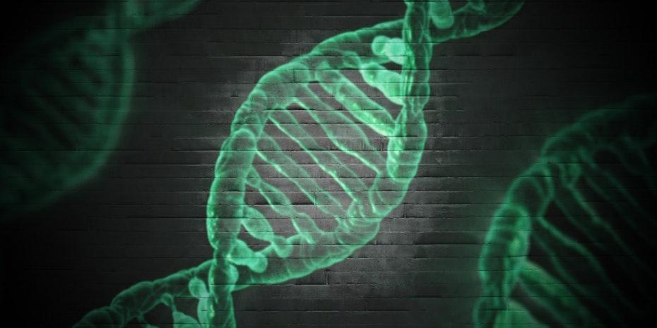 DNA Genetischer Code