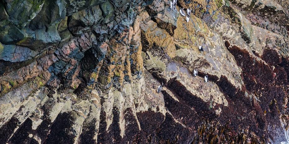 Felsen Symbolbild Geowissenschaften Berufe Berufsaussichten