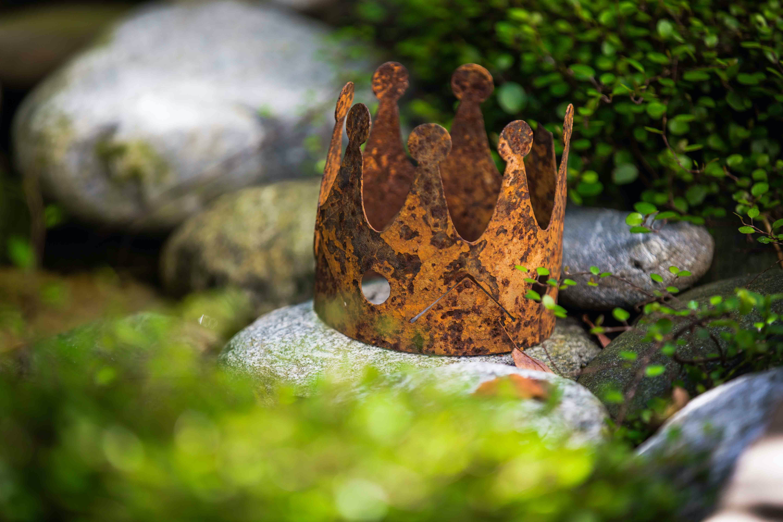 Krone im Garten als Symbolbild fuer Privilegien Professur