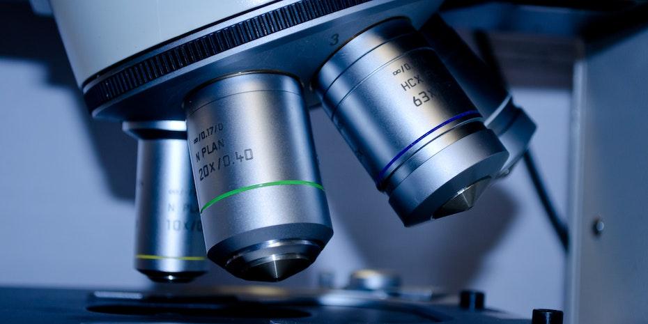 Mikroskop Forschung Symbolbild Postdoc Berufsbild