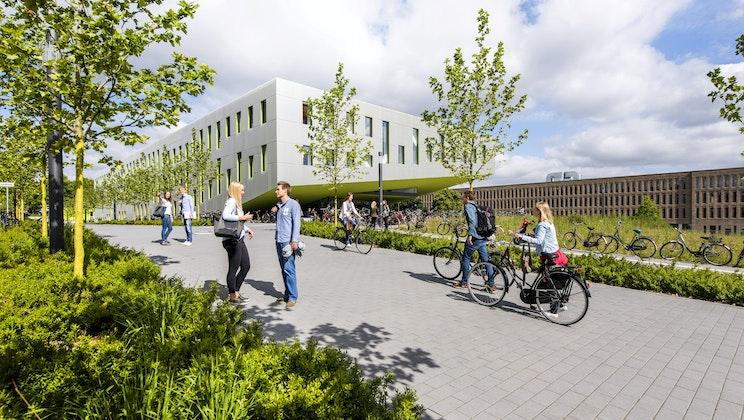 UAS7 - Fahrrad, Weg, Grün, Gebäude